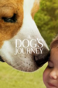Poster for A Dog's Journey